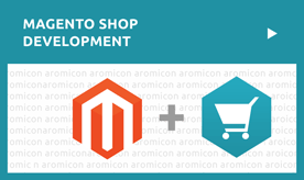 Magento Shop Development